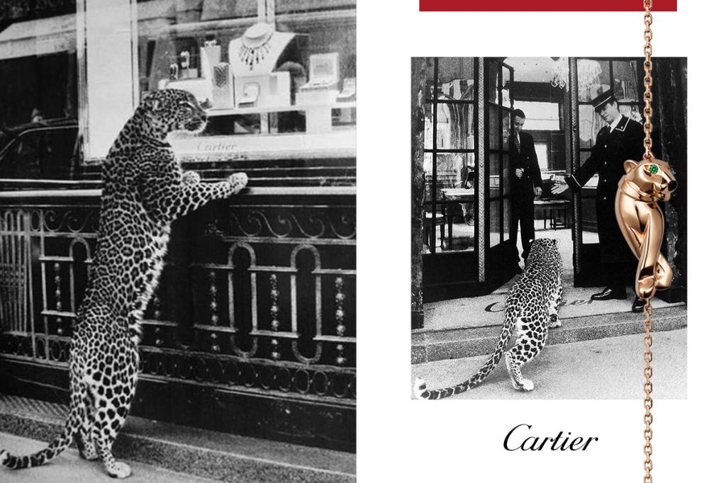 Реклама Картье 1950 года