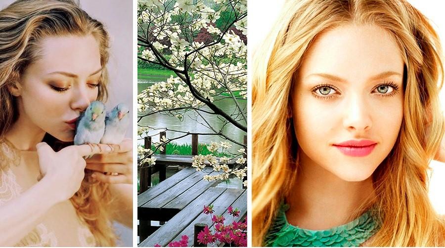 Цветотип весна Аманда Сейфрид