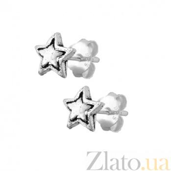 Серебряные серьги-гвоздики Stella SLX--С5/049