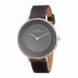 Часы наручные Skagen SKW2216 000107396