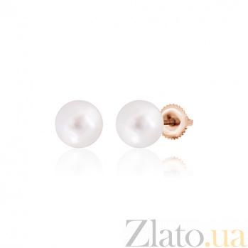 Серебряные серьги с жемчугом и позолотой Elegance SLX--С3Ж/835