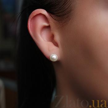 Серебряные серьги-пуссеты Дикси с жемчугом PTL--7с026/35