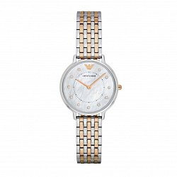 Часы наручные Emporio Armani AR2508 000108507