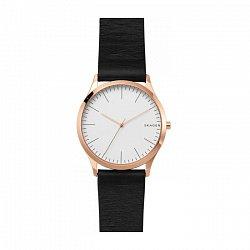 Часы наручные Skagen SKW1102