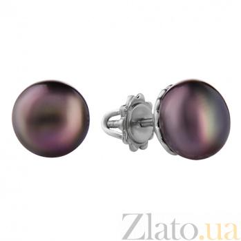 Серебряные серьги-пуссеты с жемчугом Зефир 2278/9р ч жем