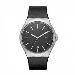 Часы наручные Skagen SKW6260