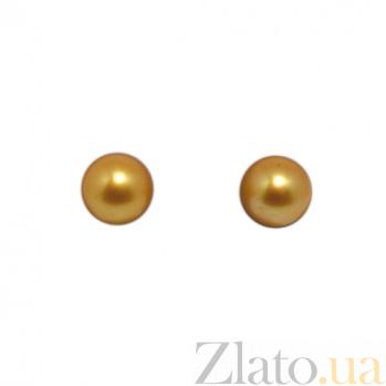Серебряные пуссеты Кларисса с шариками золотистых жемчужин 9-9,5мм 000058259