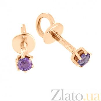 Золотые сережки-пуссеты с аметистами Энрика VLN--113-452-4
