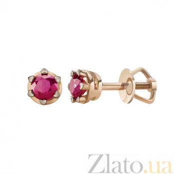 Золотые серьги-пуссеты с рубинами Вдохновение KBL--С2564/крас/руб