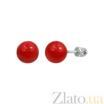 Серебряные серьги-пуссеты Дафна с красным кораллом 000081825