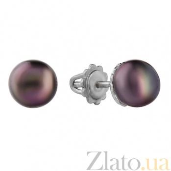 Серебряные серьги с чёрным жемчугом Малютка 2263/9р чёрн
