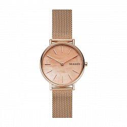 Часы наручные Skagen SKW2732 000111988