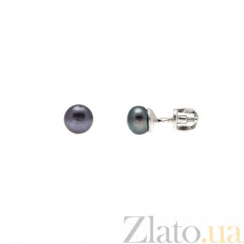 Серебряные серьги-пусеты с черным жемчугом AQA--80014Ч