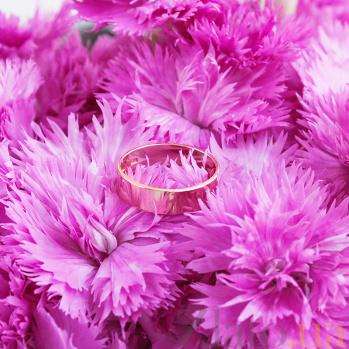 Золотое обручальное кольцо Классический стиль в красном цвете 1078/1