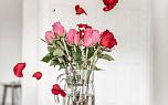 8 марта: ювелирные подарки любимым женщинам