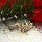 Серьги в красном золоте Софи с фианитами SVA--2190863101/б/Фианит/Цирконий