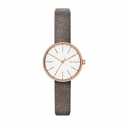 Часы наручные Skagen SKW2644